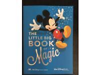 Walt Disney World Florida planning book