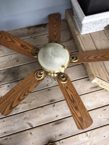 Large Ceiling Fan and Light