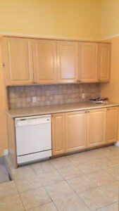 Wood kitchen cabinets for sale