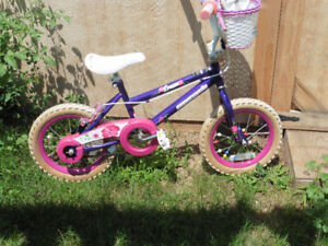 14 inch Wheel Dream Bike with training wheels and basket