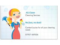 Local domestic cleaning and ironing