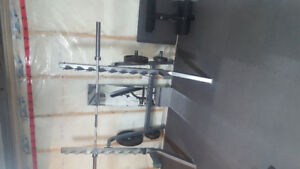 Olympic gym equipment and weights