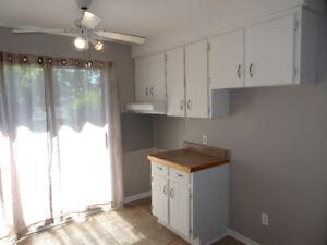 APARTMENT (2 bed)  IN ILE BIZARD,RENOVATED! CALL 514 839-8121