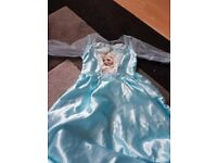 elsa fancy dress
