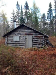 Log cabin for sale or trade