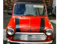 Austin mini red hot limited edition Mot'd