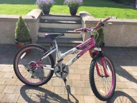 BRILLIANT Silverfox girls bike