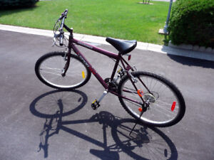 Mountain Style 12 Speed Bicycle