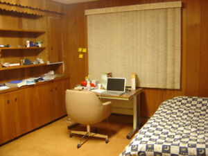 Furnished bachelor next to UNB campus all inclusive $590/m