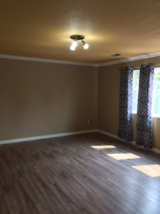 Newly renovated 1 bedroom + 1 bath