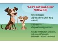 Dog Walker Dog Walking Pet Sitting