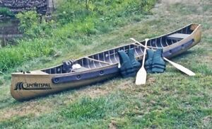 Looking for a Flat back Canoe
