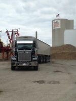 Seeking AZ Drivers for Sugar Beet Harvest