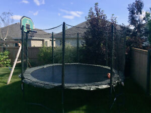Trampoline For Sale: 14' High Quality JumpSport