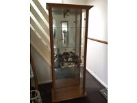 Tall Glass display cabinet in Beech Wood Effect with Lamp