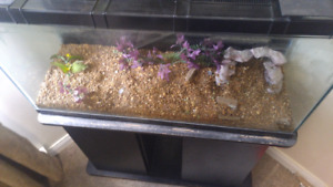55 gallon tank...... Stand with 2 lids