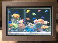"""Sony Trinitron FW900 24"""" widescreen CRT monitors (2 available)"""