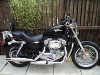 Harley Davidson 883 Sportster.......mint condition