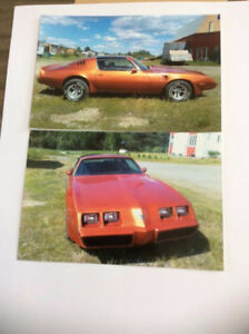 ****** Pontiac Trans am 1980 coupé ******