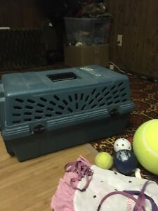 Pet carrier, toys and leash