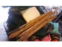 bunches of garden canes