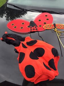 Costume Halloween coccinelle pour bebe