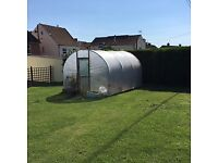 Polytunnel 10ft x 12ft approx