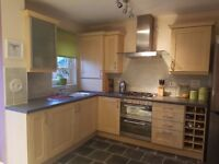 Kitchen units, worktop and sink (appliances)