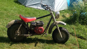 Baja monster 196cc honda clone