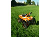50 cc quad 2 stroke brand new