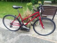 LADIES MOUNTAIN BIKE 21 GEARS (NICE CLEAN BIKE RIDES WELL) SERVICED ALSO ( IDEAL FOR A STUDENT)