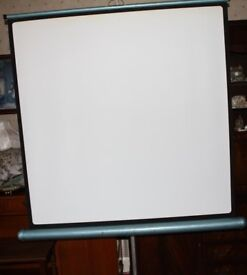 Projector Screen still in Good Useable Condition.