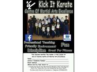 Free karate lesson in ipswich