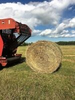 LARGE ROUND HAY BALES FOR SALE!!