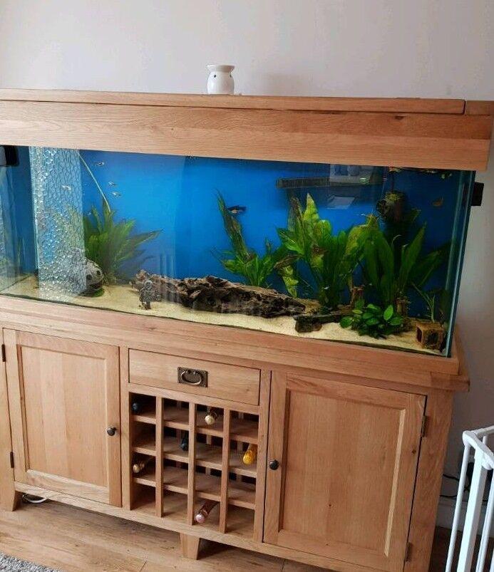 Aqua Oak 160cm Wine Rack Aquarium 330l Maidenhead