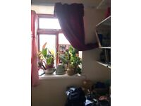 Double room in Crookes for student