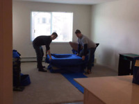 Moving company looking for casual movers to start.