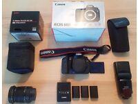 Canon 60D, Sigma 17-50mm f2.8 OSS, Canon 580ex