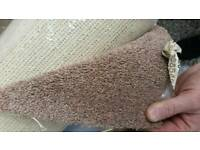 Carpet roll end sale 2m x 4m