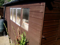 Shed T*G, 16 / 7FT