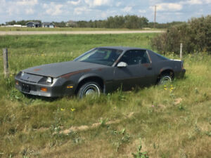 Project Car - 1985 Camaro Berlinetta Sport Coupe