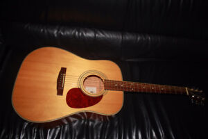 CORT SOLID SPRUCE TOP ACOUSTIC GUITAR