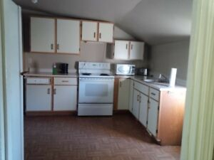 very spacious duplex in reserve mines