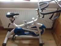 Body max spin bike exerciser