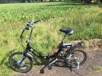 Electric bike e-go 24v lithium