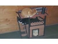 NEW large cat s /small dog s /kittens play house secure dry,cosy - cold rain wind stay dry war