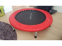 Leisurewise mini trampoline