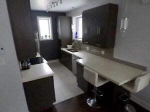 Appartement logement 4 1/2 Lafontaine st-jerome