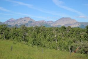 80 acres, Recreational Land, Twin Butte, Alberta