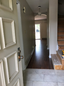 3 Bedrm townhouse; suitable for grad students or professionals